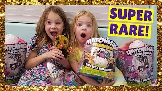 Addy and Maya Open RARE Hatchimals Golden Lynx on BLACK FRIDAY !!!
