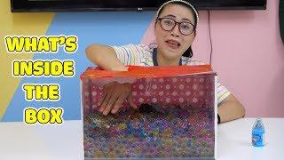 Download Thử Thách Có Gì Trong Hộp - What's inside the box? Mp3 and Videos