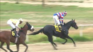 Vidéo de la course PMU PREMIO HIPOTESIS