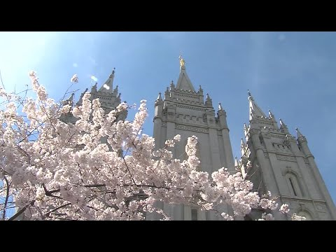 LDS Church Move On Same Sex Policy Stirs Reaction