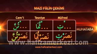 Arapça / Arapça Eğitimi / Fiil  Fail Uyumu -  Mazi Fiil Uygulama Video - 1