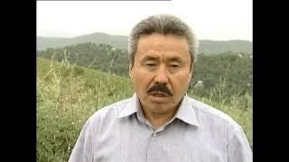 Сейдахмет  Куттыкадам о физическом устранении журналиста Асхата Шарипжанова