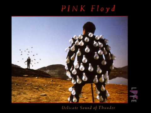 Comfortably Numb Delicate Sound of Thunder