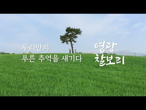 천혜의 자연보고 영광군! '찰보리 편'(3분20초)