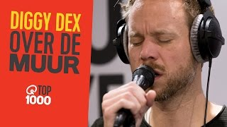 Diggy Dex -