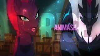 Animash - rise