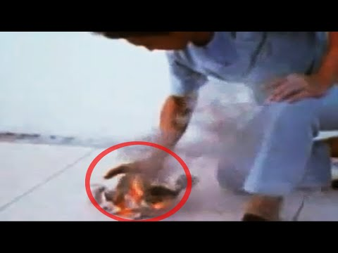 Thumbnail: 7 Most Mysterious Unexplained Events Caught on Tape