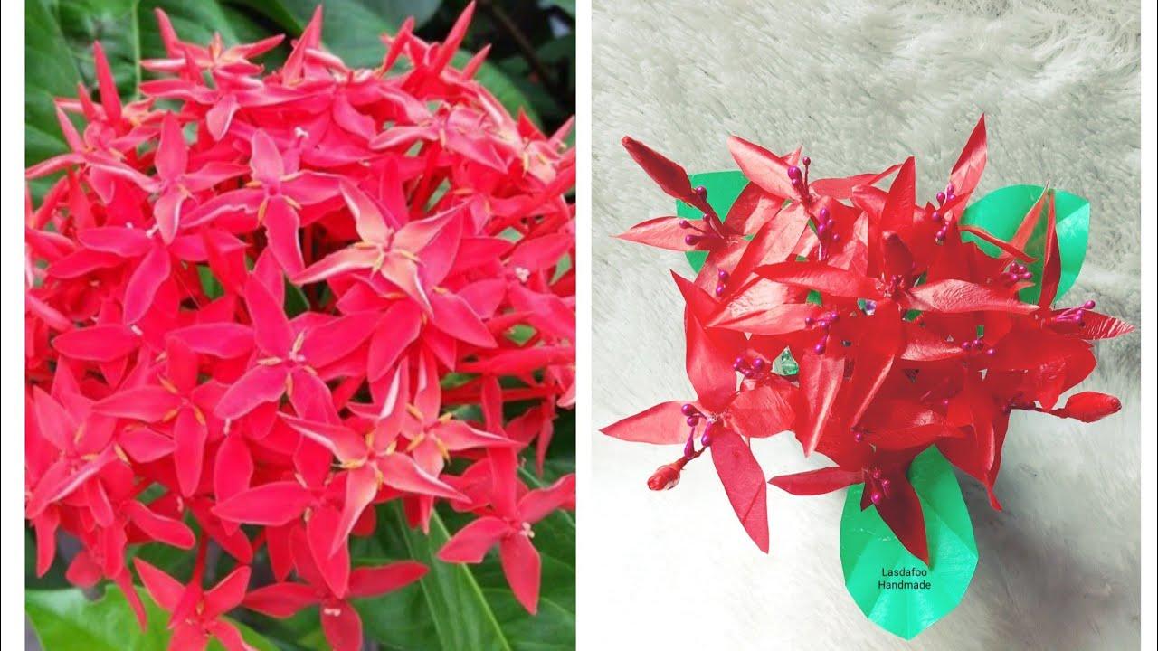 21 Cara Membuat Bunga Asoka Dari Kresek How To Make Asoka Flower From Plastic Bags Youtube