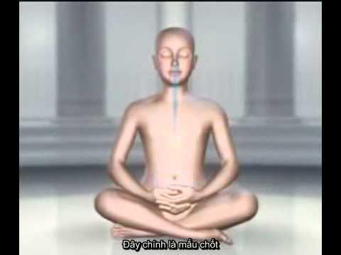 Cách ngồi thiền | Hocthien.vn