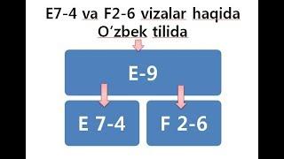 E7-4 viza va F2-6 vizalar haqida