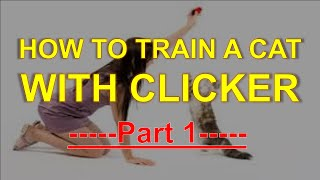 How To Train A Cat With Clicker - Part 1 - Training Pet Easy