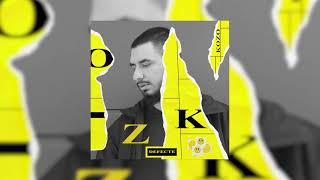 Descarca KOZO x WOLFIE - DEFECTE (Original Radio Edit)
