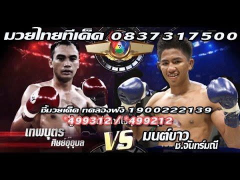 ทัศนะมวย ศึกมวยไทยเจ็ดสีพร้อมฟอร์มหลังวันอาทิตย์ที่ 23 เมษายน  2560
