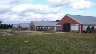 5890 Harmony Road, Preston, MD - Farm - www.sunsetproperties.net