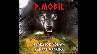 P.Mobil - Kétforintos dal [akusztikus] (Farkasok völgye - Kárpát-medence - 2014) - dalszöveggel