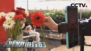 《创新进行时》 20200429 我在直播卖鲜花(二)| CCTV科教