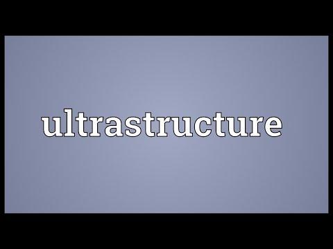 Header of ultrastructure