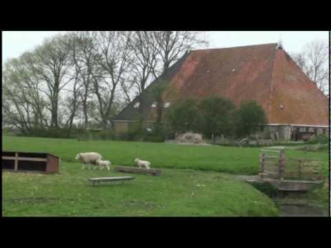 Friesland Holland Farm Visit