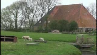 Friesland Holland Farm Visit