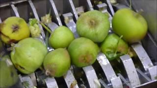 FilaMaker Organic waste shredder VS apples(, 2016-07-19T23:45:43.000Z)