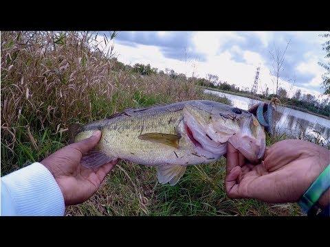 Early Fall Bass Fishing.