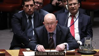 The Russian ambassador to the UN, Vassily Nebenzia, responds to UK ...