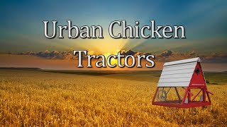 Urban Chicken Tractors Promo