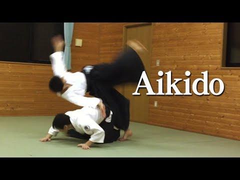 合気道 しなやかな自由技 Supple and beautiful Aikido