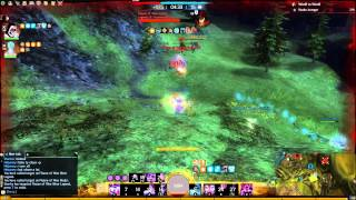 Condition Shatter Mesmer [5K Confusion] CONDI BURST_Otan Roaming