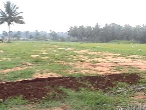 Jai Real Promoters,Coimbatore Land View ....