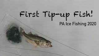 Ice Fishing Giant Puddle for Bass My First ever Tip up Fish