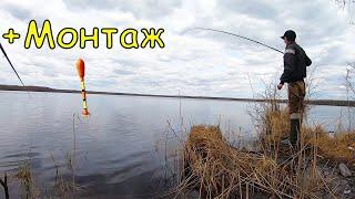 Попал на Жор на Лесном Озере Рыбалка на поплавок ловля язя в мае 2021