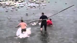 Ловля сазана видео(Ловля сазана видео смотреть Ловля крупного сазана видео Ловля сазана видео на реке Рыбалка ловля сазана..., 2016-01-17T05:04:42.000Z)