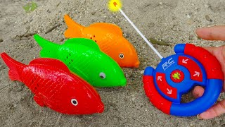 The Carps and the Miraculous Control - FMC G547T Children's Toy