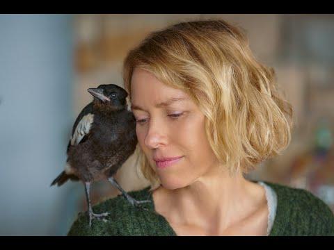 Penguin Bloom, con Naomi Watts, tratto dall'omonimo romanzo   Trailer ITA HD