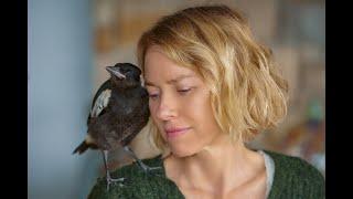 Penguin Bloom, con Naomi Watts, tratto dall'omonimo romanzo | Trailer ITA HD