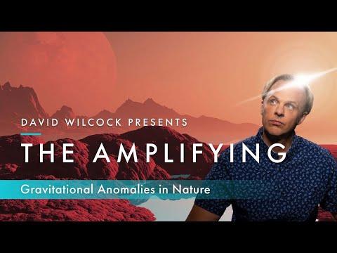 David Wilcock: The Amplifying -- Gravitational Anomalies in Nature