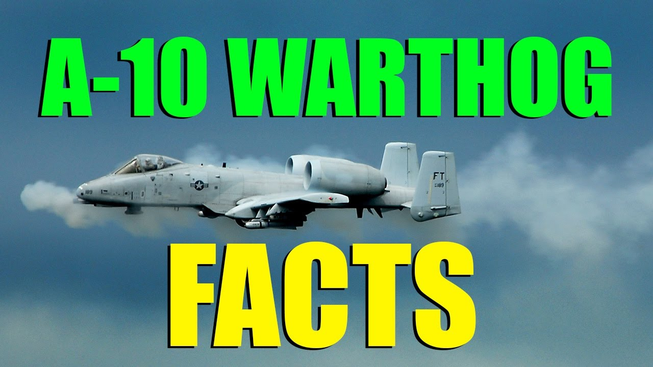 7 Facts About the A-10 Warthog! (A Marine's Best Friend ...