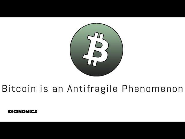 Bitcoin: The Antifragile Phenomenon