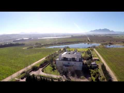 Boutique Wine & Olive Farm For Sale - Stellenbosch