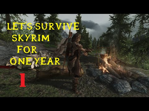 Let's Survive Modded Skyrim for One Year Session 1