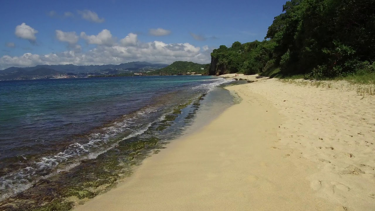 A Walk on Pink Gin Beach Grenada  YouTube