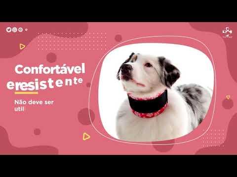 Colar Protetor Cervical - Pet Med