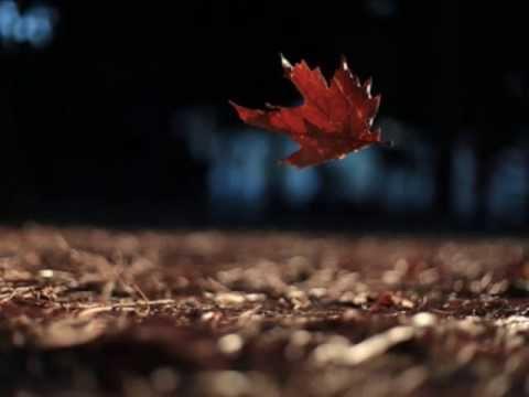 Elle Varner - Leaf
