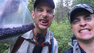 Artist Wilderness Connection-short video(For ten days Montana artists Kenneth Yarus and Richie Carter explored the Great Bear Wilderness as part of the Artist-Wilderness-Connection program - an ..., 2016-08-15T16:24:46.000Z)
