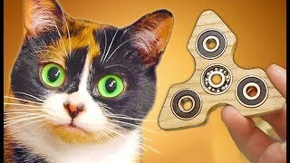 Made a FIDGET SPINNER for CAT