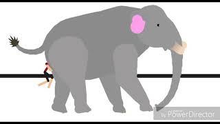 Female Elephant Anal Vore