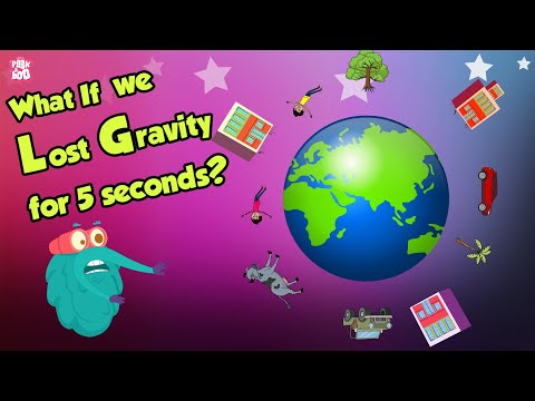What If We Lost GRAVITY for 5 Seconds?   Gravity   Space Video   Dr Binocs Show   Peekaboo Kidz