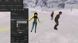 Instructions How to set up AnimPet Animesh Ice Skating People