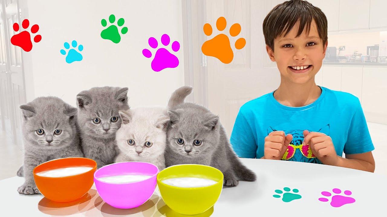 Макс и Катя играют в прятки с котятами